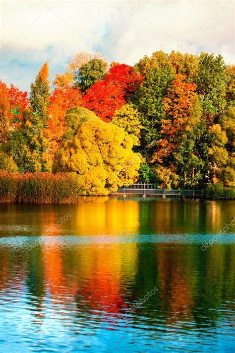Beautiful Autumn Park Colourful Leaves Trees Lake Autumn ...