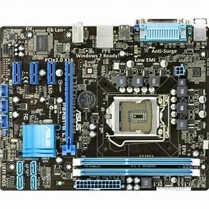 Asus Computer International P8h61