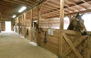 A Clean Well Lighted Place by Home Horse Stables