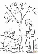 Planting Tree Clipart Coloring Draw Boy Drawing Easy Colorare Albero Outline Plantation Kolorowanka Sadzenie sketch template