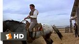 The Big Country (3/10) Movie CLIP - Riding Old Thunder ...
