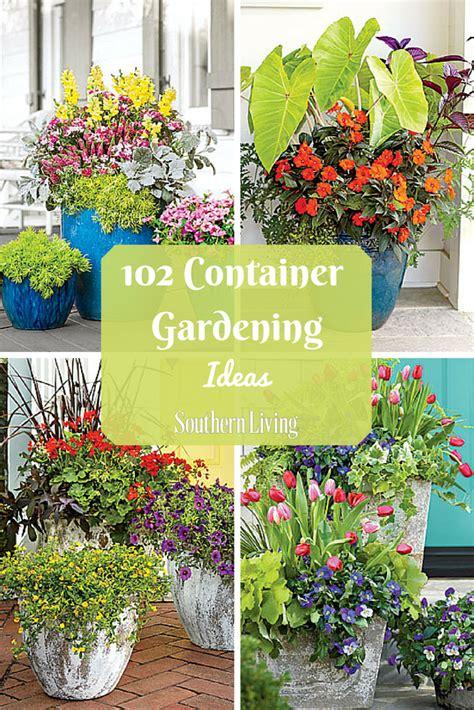 121 Container Gardening Ideas Container Gardening Porch