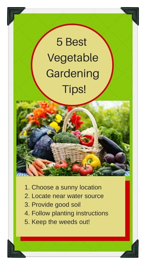planting zone vegetable guide garden spring schedule complete