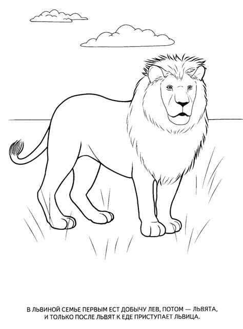 Coloring Pages Animals by Animals Coloring Pages For To Print For Free