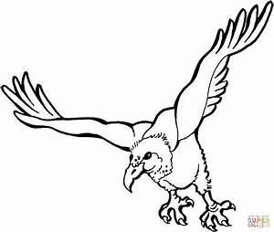 Flying Vulture coloring page | Free Printable Coloring Pages