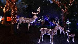 Best Places To See Christmas Light Displays In Sydney 2018 ...