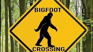 Bigfoot Truthers Turn On Their Leaders