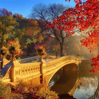 Paisagens Morning Deslumbrantes Natureza Nature Autumn Fall