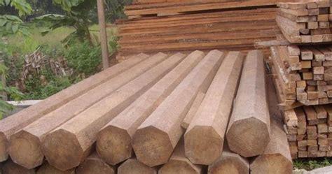 kelebihan  kekurangan  jenis kayu tabloid rumah