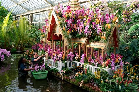 experience thousands  orchids  kew gardens thai