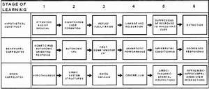 Diagram Of A 6