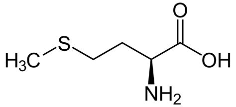Methionine |structure & Functions