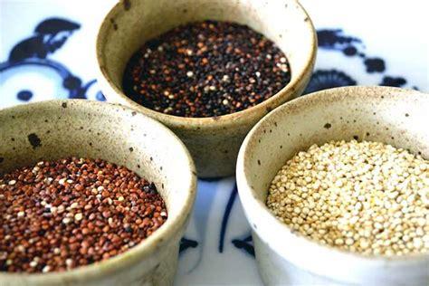 cuisiner quinoa comment cuisiner le quinoa noir cosmetique bio