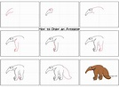 How to Draw an Anteater Step by Step - Cute Easy Drawings