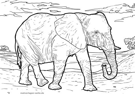 Malvorlage Erwachsene Elefant Voicesoftwilight Com