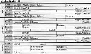 Gemüse Pflanzen Was Passt Zusammen : zum anfang der seite zur ck zum biogarten ~ Lizthompson.info Haus und Dekorationen