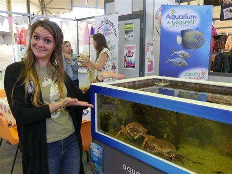 l aquarium de vannes foire expo de vannes r 233 cr 233 atiloups