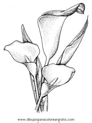 molde calas cuadro flower search