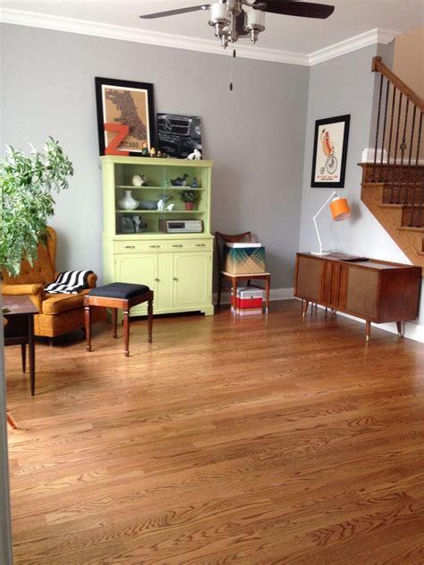 martha stewart paint chinchilla for the home