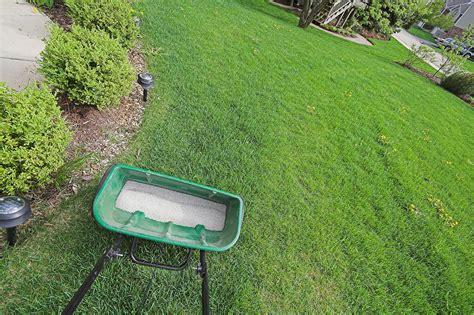 Lawn Fertilization 101