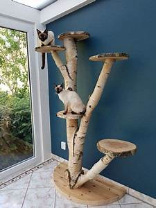 15 things to avoid in building a custom cat tree meowlogy