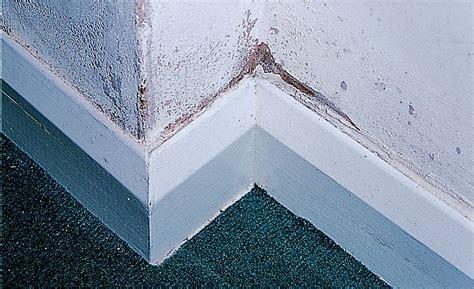 identify repair protect  damp  home
