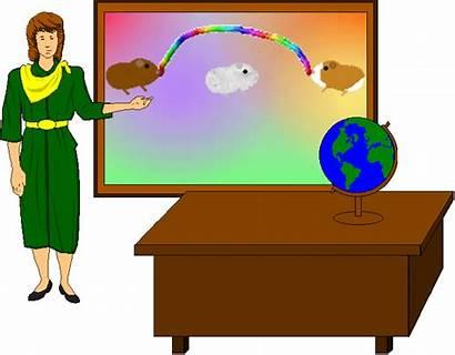 Teacher Animated Classroom Transparent Clipart Gifs Clip
