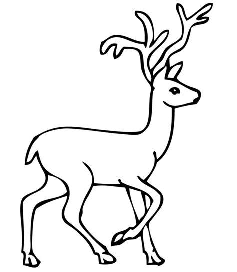 Reindeer Template by Outline Drawing Reindeer Clipart Best