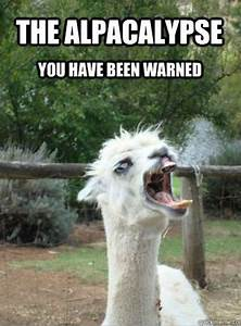 28 best Alpaca Memes images on Pinterest | Alpaca funny ...