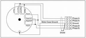 8 pole motor wiring diagram get free image about wiring With stepper motor winding and wiring diagram