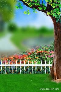 Outdoor Natural Studio Background HD (PsdStar.Com ...