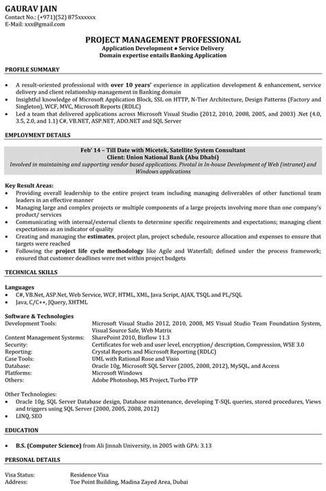 resume software developer resume sles free