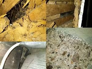 Wie Erkennt Man Asbest : asbestentsorgung kosten kosten der asbestentsorgung preise pro m und checkliste eternit ~ Orissabook.com Haus und Dekorationen