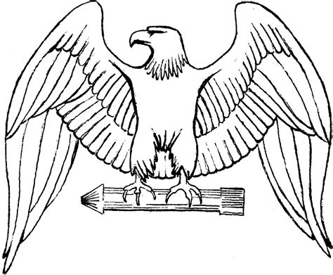bald eagle template free printable eagle coloring pages for kids