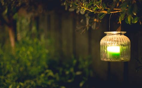 Mood Light Lamps Green Candle Leaves Branch Blur Tree Background Wallpaper Widescreen Full
