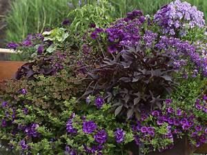 Balkon Ideen Pflanzen : ideen f r ihre balkon gestaltung in blau und schwarz ~ Lizthompson.info Haus und Dekorationen