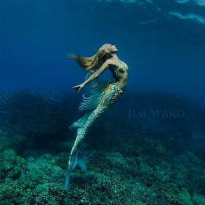 A Real-Life Mermaid Who Swims With Sharks Using Her Fish ...