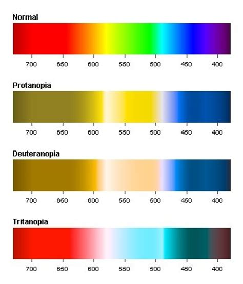 cat color vision the spectrum as perceived by individuals with normal color