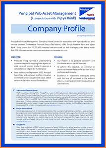 Invoice Small Business 9 Company Business Profile Sample Company Letterhead