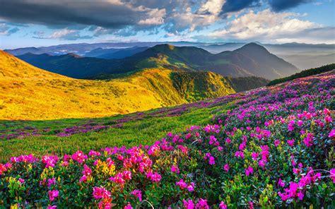 Beautiful Spring Mountains Desktop