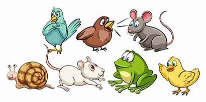 Animal Animals Vector Different Animated Svg Cliparts