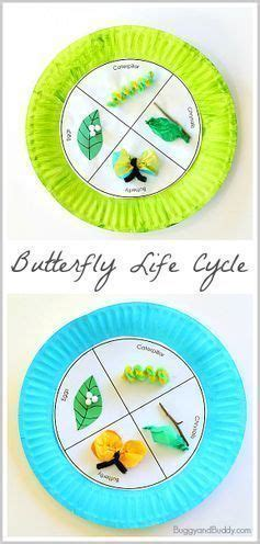Butterfly Life Cycle Paper Plate Toy Craft Free Fjextange Template by 1111 Best Spring Images On Pinterest Teaching Science