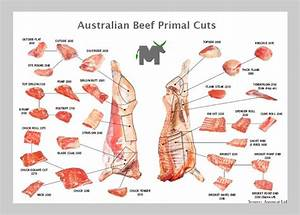 Meat Cut Chart Food Production And Preservation Forums