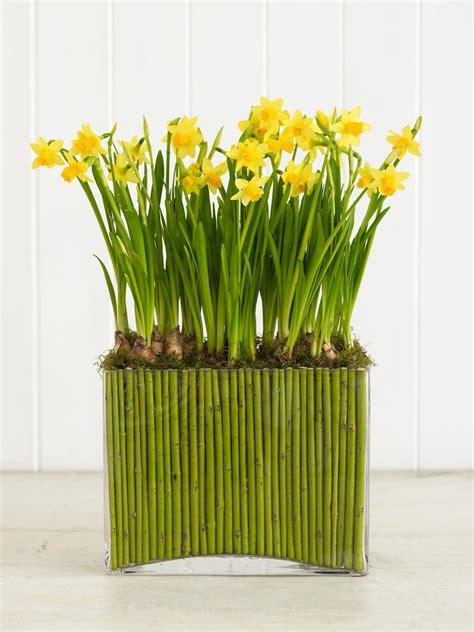 les fleurs la meilleure decoration maison au printemps