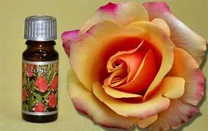 Duftöl Selber Machen : duft l rose kerzen duft l kerzen gie en kerzen selber machen die ~ Orissabook.com Haus und Dekorationen