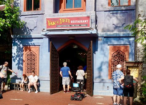 places  eat  animal kingdom dining guide disney