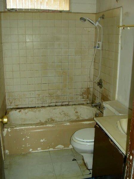 clean mold   bathroom tile naturally homesteady