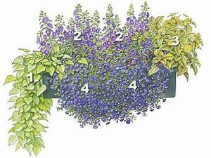 Pflanzen Für Balkonkästen Sonnig : trendige blumenk sten zum nachpflanzen balkonk sten balkon und blumenk sten ~ Bigdaddyawards.com Haus und Dekorationen