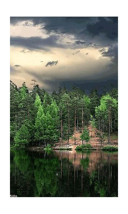 Nature Gifs Google Naturaleza Places Paisajes Natureza
