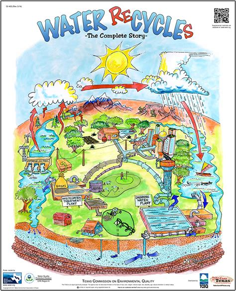 water cycle poster  care  texas